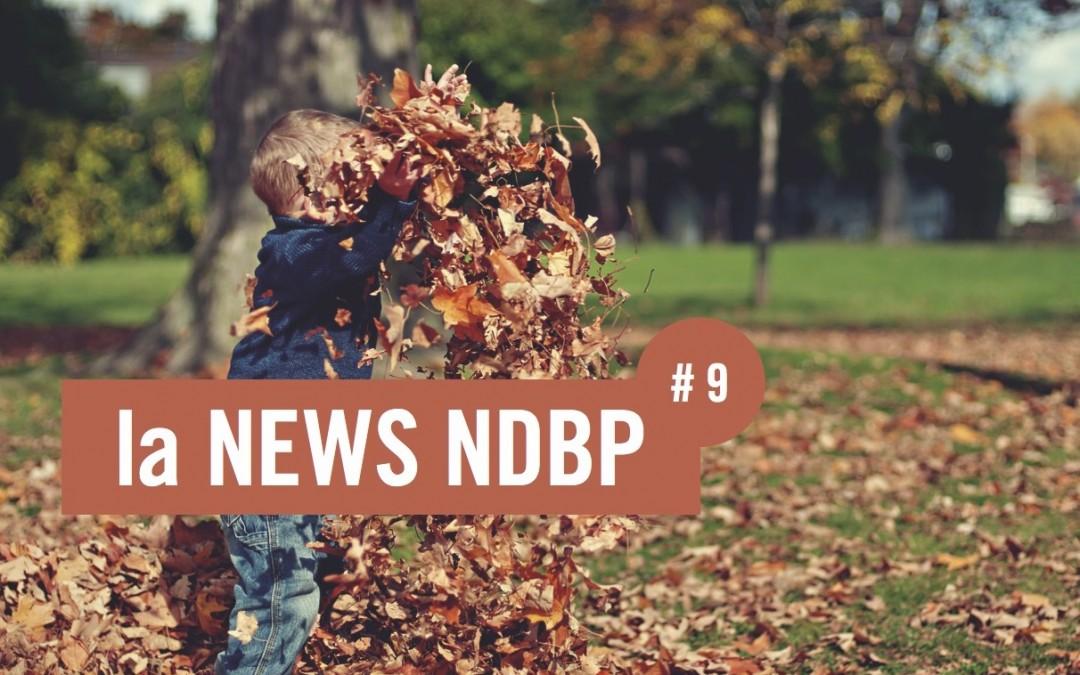 la NEWS NDBP #9